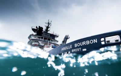 L'abeille Bourbon en mode «Aqua Immersif» !