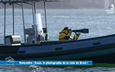 Reportage France3 national !